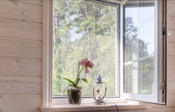 Ventajas de instalar mosquiteras en las ventanas y puertas de tu hogar